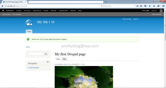 drupal page